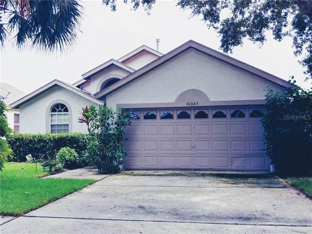 16045 Magnolia Hill Street, Clermont, FL 34714 (MLS #R4903769) :: Griffin Group