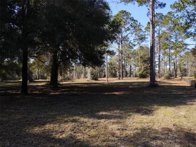 XXX Bonsmara Drive, Groveland, FL 34736 (MLS #R4904400) :: Premier Home Experts