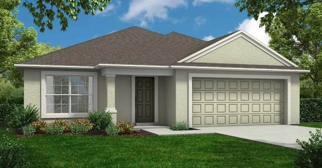 3108 Calypso Drive, Avon Park, FL 33825 (MLS #R4904543) :: Bridge Realty Group