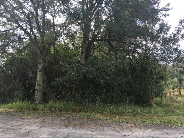 1ST Street, Kenansville, FL 34739 (MLS #S4825354) :: The Duncan Duo Team