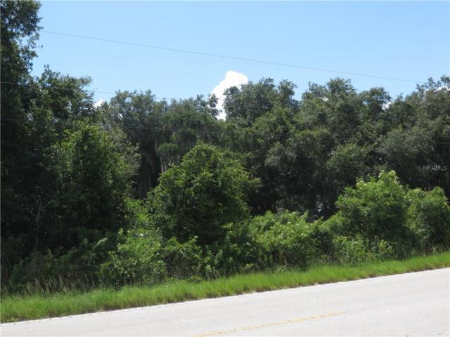 E Lake Shore Boulevard, Kissimmee, FL 34744 (MLS #S4832634) :: The Duncan Duo Team