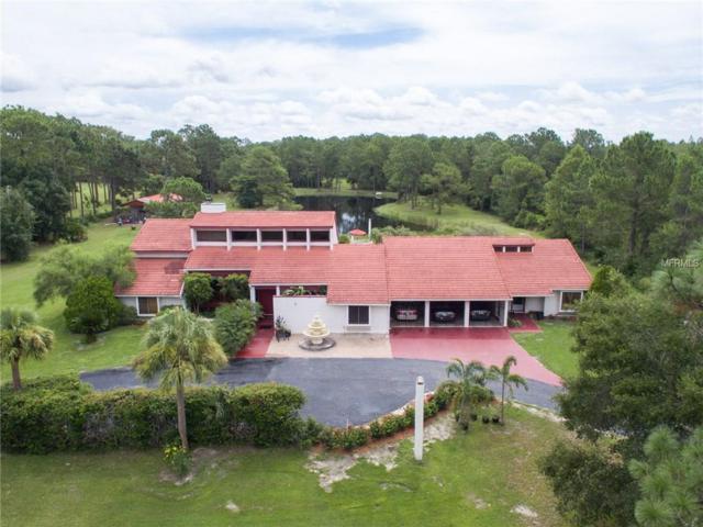 2725 Canoe Creek, Saint Cloud, FL 34772 (MLS #S4848356) :: G World Properties
