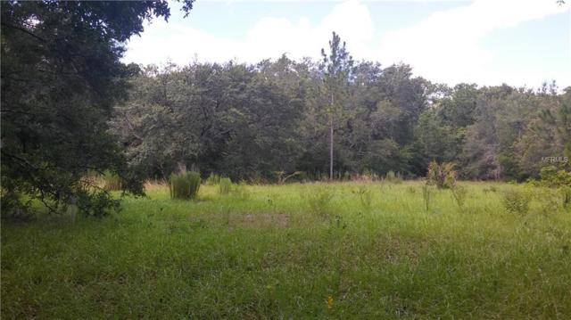 Merchan Trail, Kissimmee, FL 34747 (MLS #S4849112) :: The Duncan Duo Team
