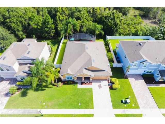 2460 Cypress Tree Trail, Saint Cloud, FL 34772 (MLS #S4850623) :: Godwin Realty Group
