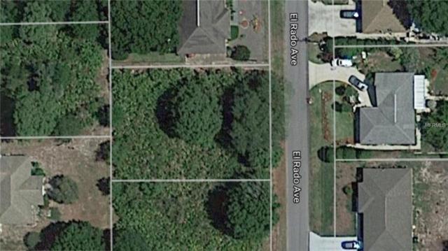 3921 El Rado Avenue, Sebring, FL 33872 (MLS #S4854551) :: Homepride Realty Services