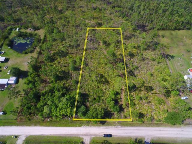 Concord Road, Saint Cloud, FL 34771 (MLS #S5002320) :: Mark and Joni Coulter | Better Homes and Gardens