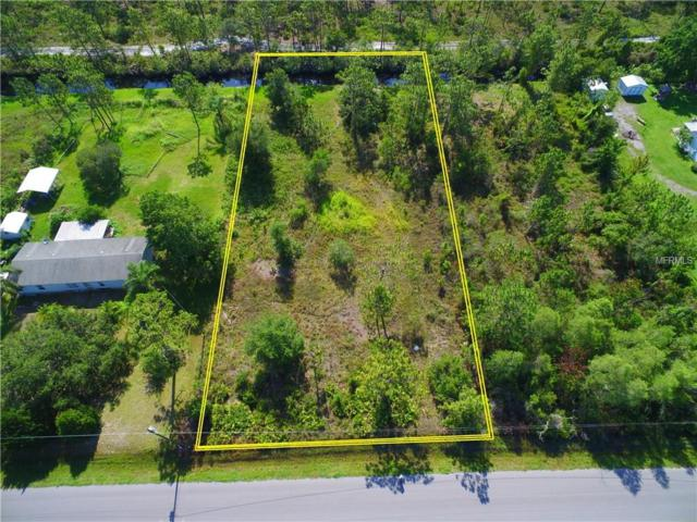 Pierre Avenue, Saint Cloud, FL 34771 (MLS #S5003434) :: Mark and Joni Coulter | Better Homes and Gardens