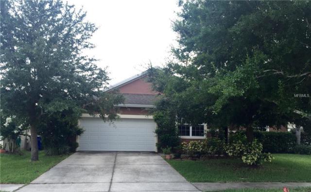 241 Michigan Estates Circle, Saint Cloud, FL 34769 (MLS #S5004493) :: The Light Team