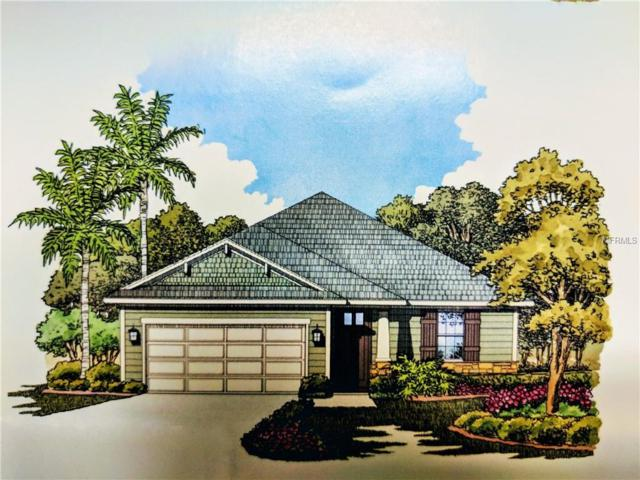 5215 Rambling Road, Saint Cloud, FL 34771 (MLS #S5005309) :: The Duncan Duo Team