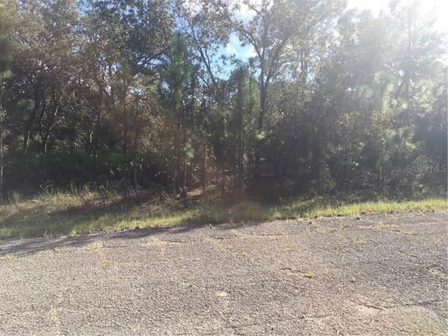 2428 W Wilmington Loop, Citrus Springs, FL 34434 (MLS #S5008217) :: Zarghami Group