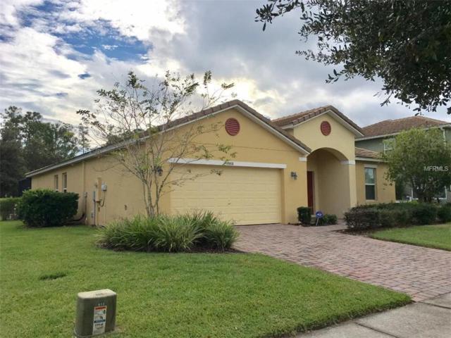 9118 Stromboli Court, Kissimmee, FL 34747 (MLS #S5010143) :: The Duncan Duo Team