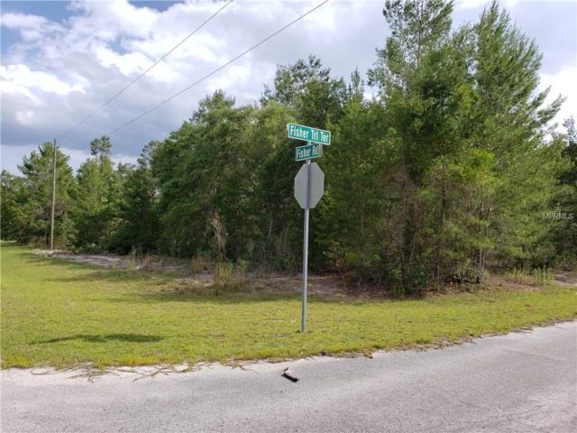 fishing trail terrac Fishing Trail Terrace, Ocklawaha, FL 32179 (MLS #S5017718) :: Team Bohannon Keller Williams, Tampa Properties