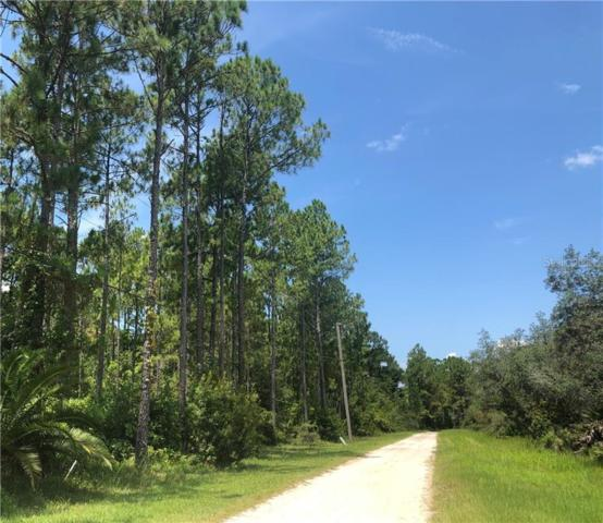 Thacker Trail, Kissimmee, FL 34747 (MLS #S5019841) :: Griffin Group