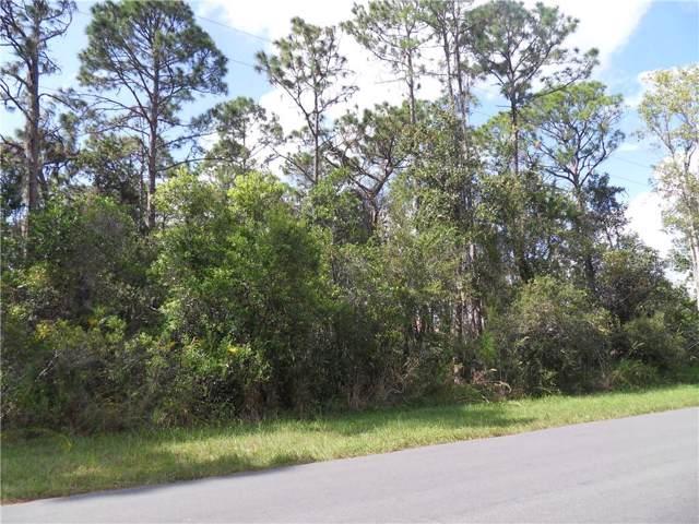 Bronco Drive, Saint Cloud, FL 34771 (MLS #S5022206) :: The Duncan Duo Team