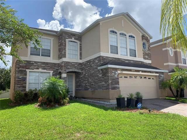 13839 Sand Meadow Lane, Orlando, FL 32824 (MLS #S5023009) :: The Light Team