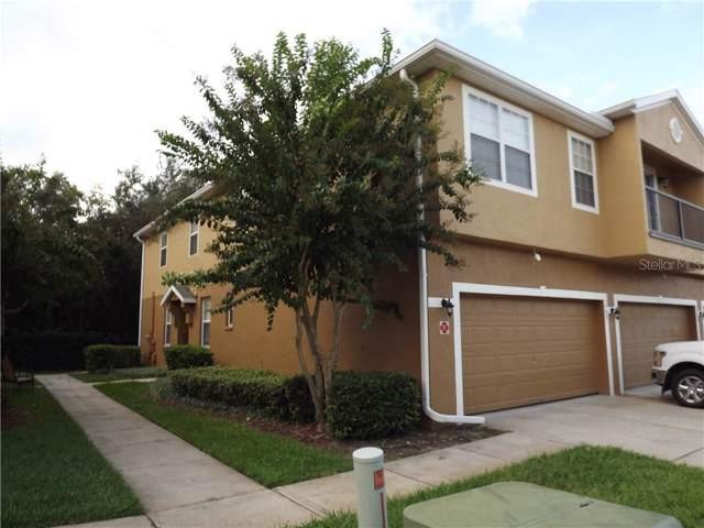 3993 Pemberly Pines Circle, Saint Cloud, FL 34769 (MLS #S5023425) :: Team 54