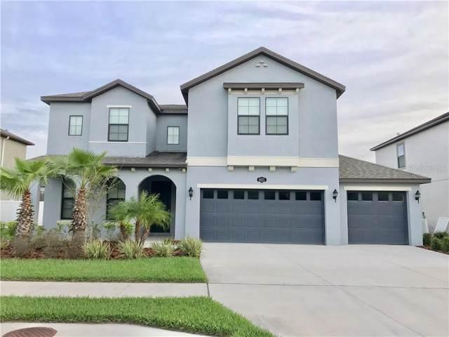 10625 Mistflower Lane, Tampa, FL 33647 (MLS #S5024891) :: Florida Real Estate Sellers at Keller Williams Realty