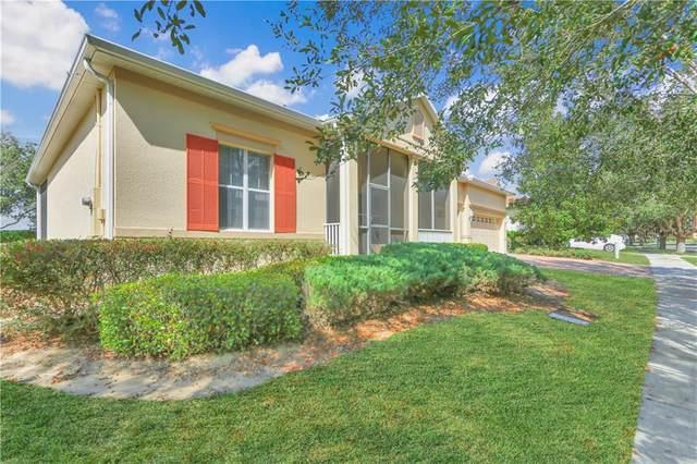 183 Crepe Myrtle Drive, Groveland, FL 34736 (MLS #S5025196) :: Vacasa Real Estate