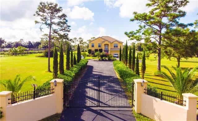 6910 Beth Road, Orlando, FL 32824 (MLS #S5026045) :: Armel Real Estate