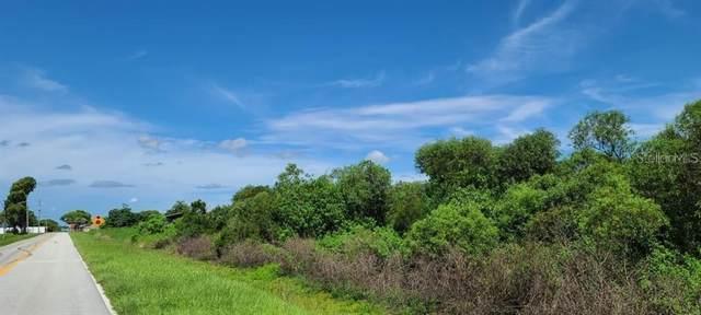 Tohopekaliga Drive, Saint Cloud, FL 34772 (MLS #S5029339) :: Team Buky