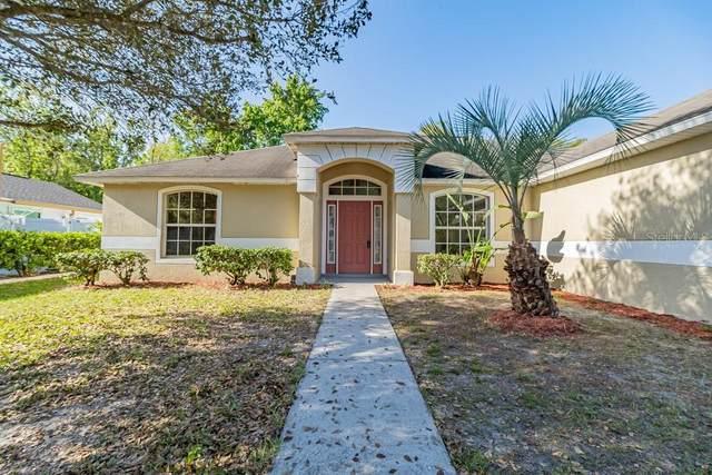 795 Del Prado Drive, Kissimmee, FL 34758 (MLS #S5031506) :: Bustamante Real Estate