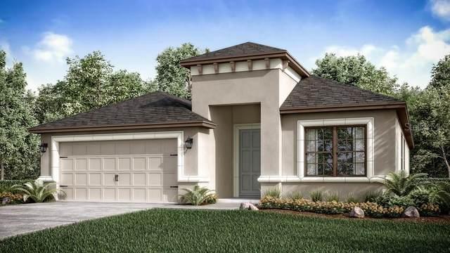 3951 Carrick Bend, Kissimmee, FL 34746 (MLS #S5032218) :: Premium Properties Real Estate Services