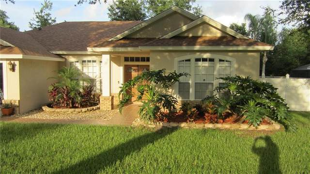 554 Safeharbour Drive, Ocoee, FL 34761 (MLS #S5036608) :: Premium Properties Real Estate Services