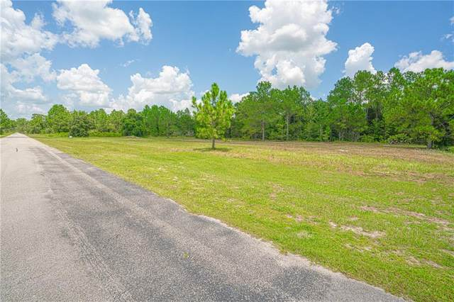 Greengrove Boulevard, Clermont, FL 34711 (MLS #S5037556) :: Zarghami Group