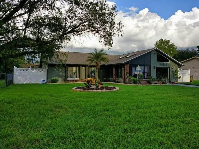 823 E Flag Lane, Kissimmee, FL 34759 (MLS #S5044547) :: Pepine Realty