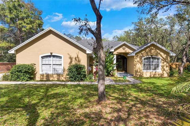 74 Pine Forest Drive, Haines City, FL 33844 (MLS #S5047102) :: Pepine Realty