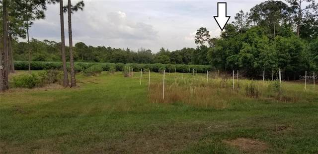 Black Road, Lake Wales, FL 33898 (MLS #S5050632) :: Armel Real Estate