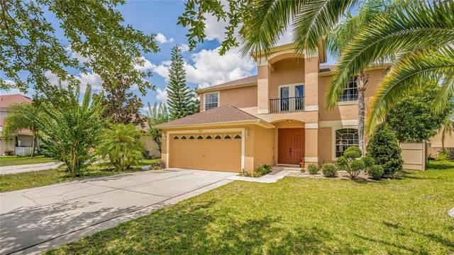 9915 Doriath Circle, Orlando, FL 32825 (MLS #S5051838) :: Vacasa Real Estate