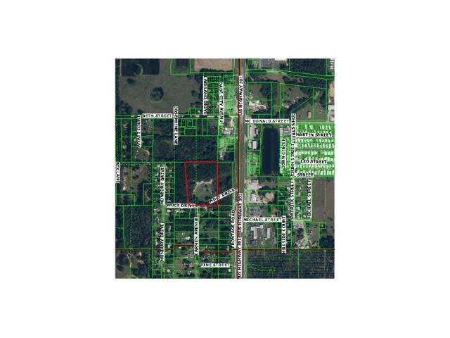 37905 Wdcf Drive, Dade City, FL 33525 (MLS #T2751034) :: The Duncan Duo Team