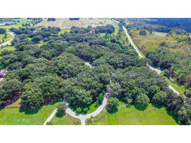 0 Oak Canopy Junction Lot 101, Thonotosassa, FL 33592 (MLS #T2778241) :: Griffin Group