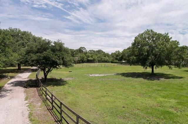 18002 Mckinnon Road, Odessa, FL 33556 (MLS #T2794000) :: Rabell Realty Group