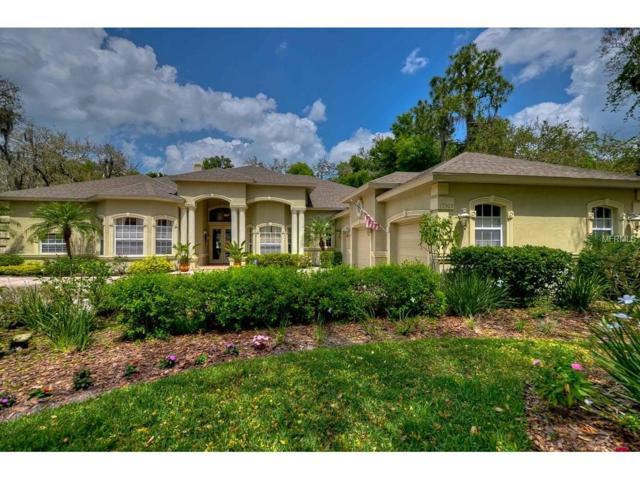 17908 Burnt Oak Lane, Lithia, FL 33547 (MLS #T2810635) :: Team Bohannon Keller Williams, Tampa Properties