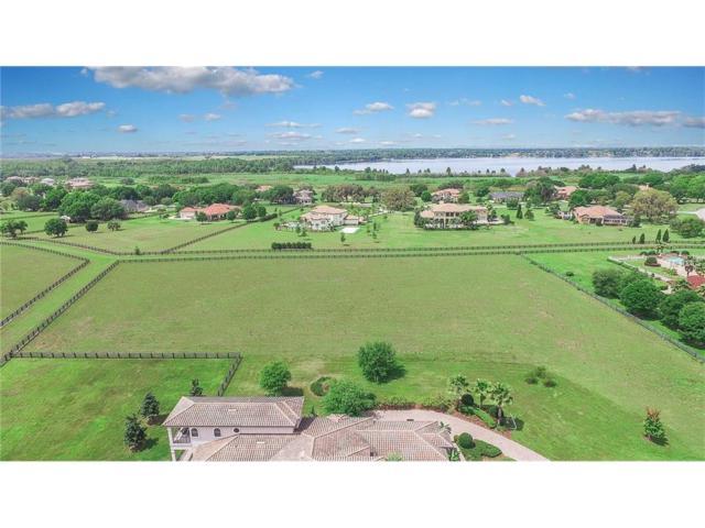 10606 Midview Terrace Lot 124, Thonotosassa, FL 33592 (MLS #T2811671) :: Griffin Group