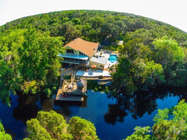 9208 Carr Road, Riverview, FL 33569 (MLS #T2816541) :: The Duncan Duo & Associates