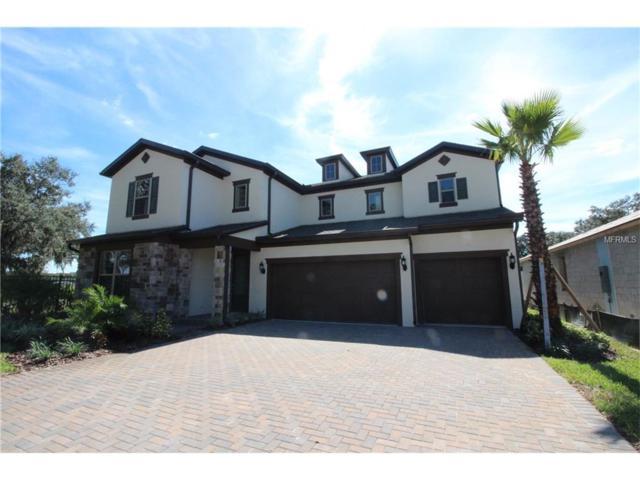 11213 Lark Landing Court, Riverview, FL 33569 (MLS #T2832642) :: The Duncan Duo & Associates