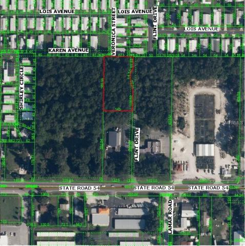 Flint Street, Zephyrhills, FL 33541 (MLS #T2838614) :: The Duncan Duo Team