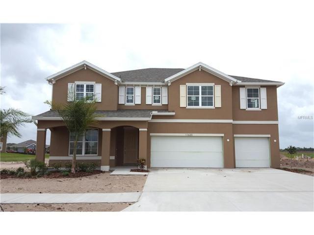 11620 Tetrafin #1019-65 Drive, Riverview, FL 33579 (MLS #T2840762) :: The Duncan Duo & Associates