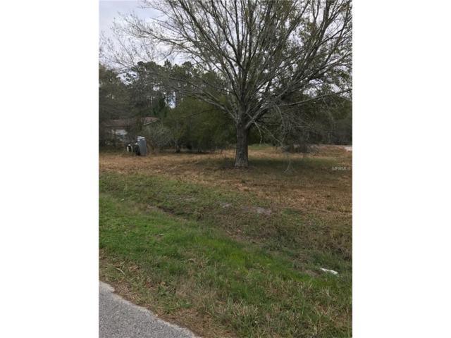 18000 Driftwood Lane, Lutz, FL 33558 (MLS #T2850210) :: The Duncan Duo & Associates