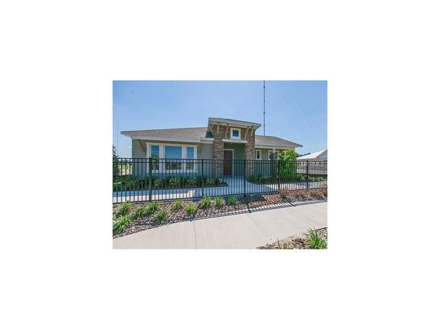 6005 Sparrowhead Way, Lithia, FL 33547 (MLS #T2852782) :: The Duncan Duo & Associates