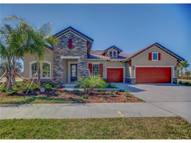 6203 Knob Tree Drive, Lithia, FL 33547 (MLS #T2854980) :: The Duncan Duo & Associates