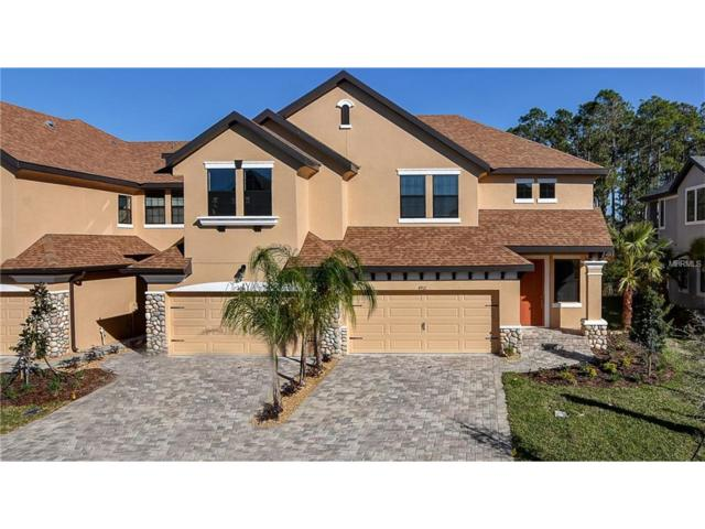 4912 Wandering Way, Wesley Chapel, FL 33544 (MLS #T2855024) :: The Duncan Duo & Associates