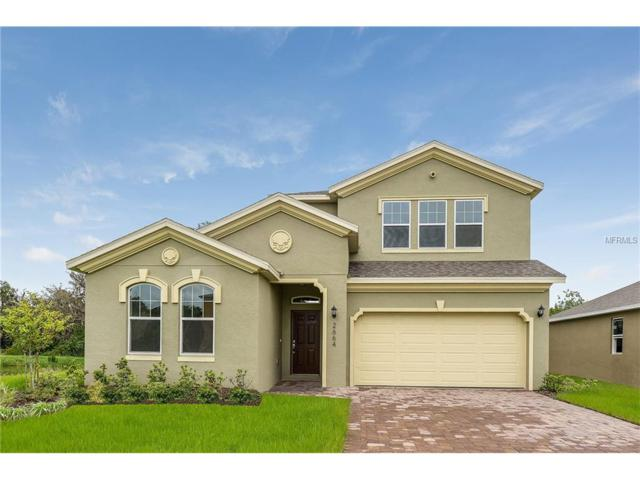 2664 Gaspirilla Circle, Kissimmee, FL 34746 (MLS #T2858784) :: The Duncan Duo Team