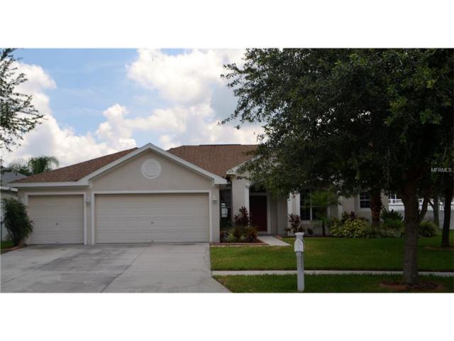 12426 Bramfield Drive, Riverview, FL 33579 (MLS #T2859497) :: The Duncan Duo & Associates