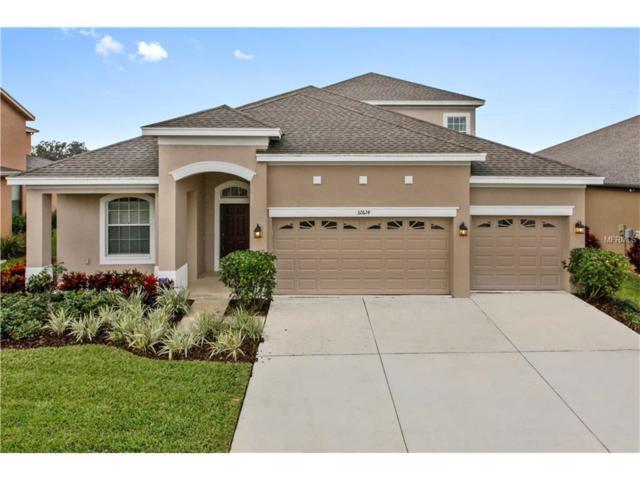 32624 Summerglade Drive, Wesley Chapel, FL 33544 (MLS #T2865239) :: The Duncan Duo & Associates