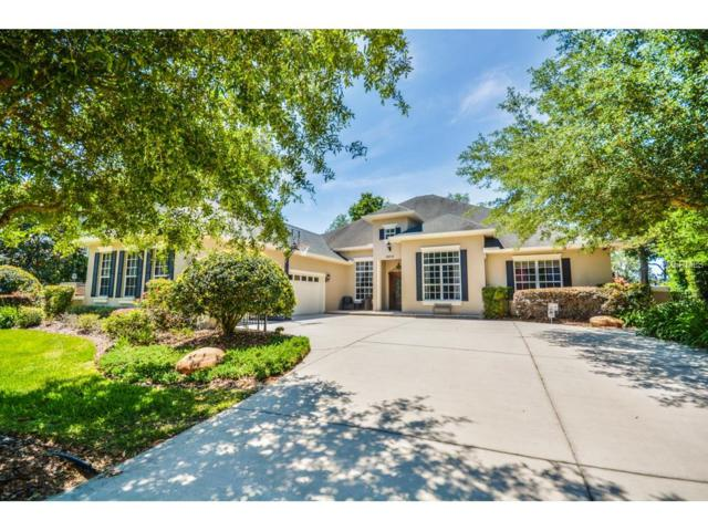 29516 Chapel Park Drive, Wesley Chapel, FL 33543 (MLS #T2868726) :: The Duncan Duo & Associates