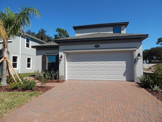 19400 Roseate Drive, Lutz, FL 33558 (MLS #T2871555) :: The Duncan Duo & Associates